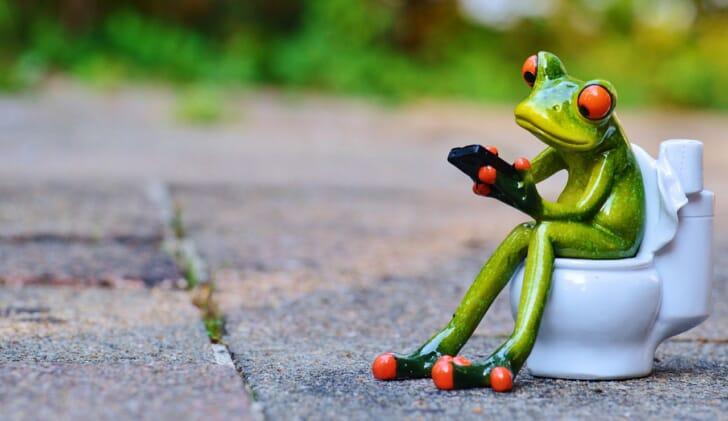 カエルのオブジェが洋式トイレに腰かけている画像