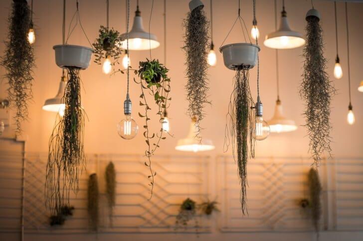 北欧テイストのインテリアの部屋に複数の照明が垂れ下がっている画像