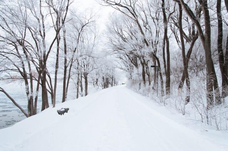 雪の積もった山道の写真