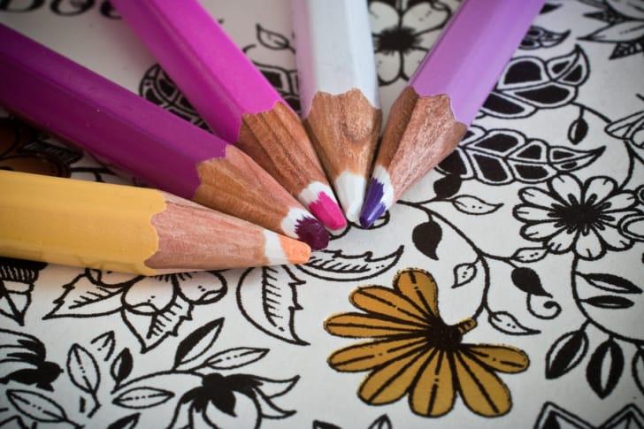 色鉛筆と大人の塗り絵の写真