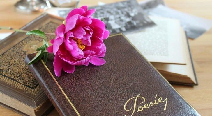 アルバムと花の画像