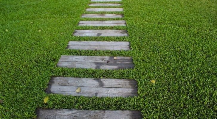 芝生のある庭にある小道の写真