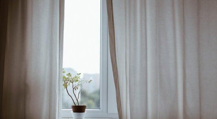 ナチュラルなカーテンと植物の画像