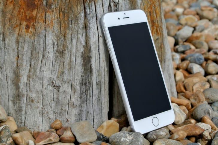 木に立てかけているスマートフォンの写真